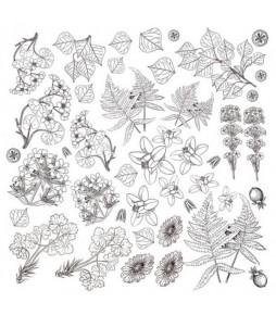 """Лист для раскрашивания акварельными чернилами """"Botany summer""""  30,5 см Х 30,5 см"""