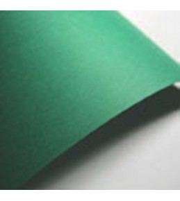 "Цветной картон ""Paperline Asparagus"" 160 г/м2 (А4 ) 10 шт."