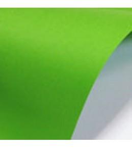 """Цветной картон """"Paperline Parrot""""  160 г/м2 А4 10 шт."""