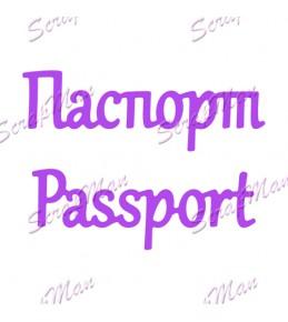 """Набор ножей Passport (Паспорт) """" ScrapMan """""""