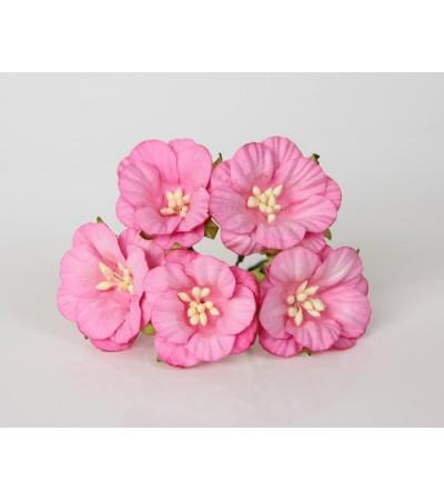 Вьюнки розовые, 4 см