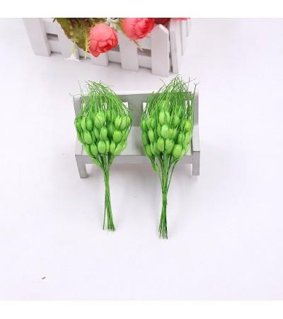Колосья пшеницы, зеленые