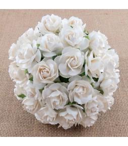 Розы , белые , 30 мм