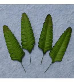 Листья,  7 см