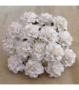 Розы Тосканы,  белые ,  30 мм
