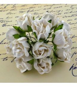 Бутоны диких роз,   белые  , 20 мм