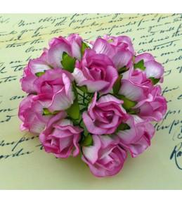 Бутоны диких роз,  20 мм,   2-тоновые