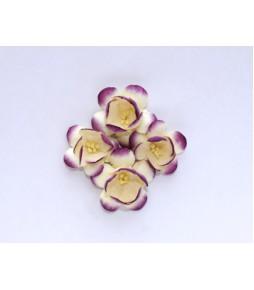 Цветы сакуры бело-фиолетовые