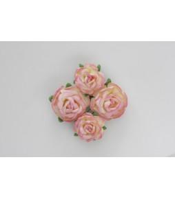 Цветы чайной розы розово-желтые