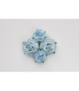 Цветы чайной розы  голубые
