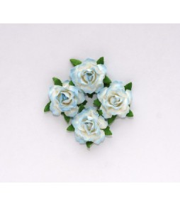 Цветы кудрявой розы  сине-белые