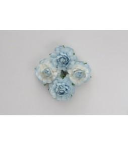 Цветы розы, 35 мм